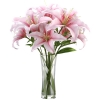 send lilies to dhaka, delivery lilies in dhaka