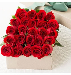 send 24 red roses full box arrangement to dhaka, bangladesh
