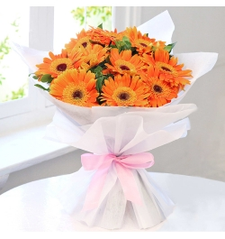 Send Dozen Orange Gerberas to Dhaka in Bangladesh