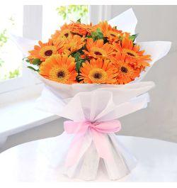 Send Dozen Orange Gerberas to Dhaka in Bangladesh