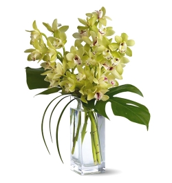 Delivery 10 Pcs. White Color Orchid in Vase to Bangladesh