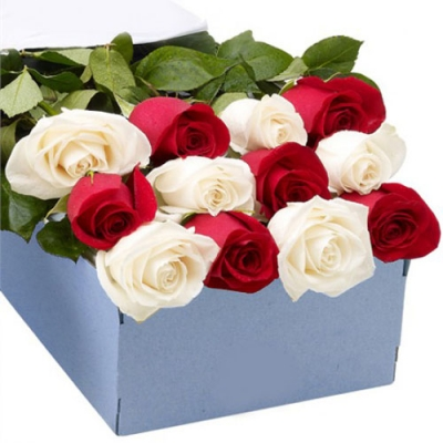 send 12 red and white roses full box arrangement to dhaka, bangladesh