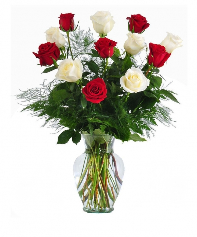send 6 red & 6 white roses In a vase to dhaka